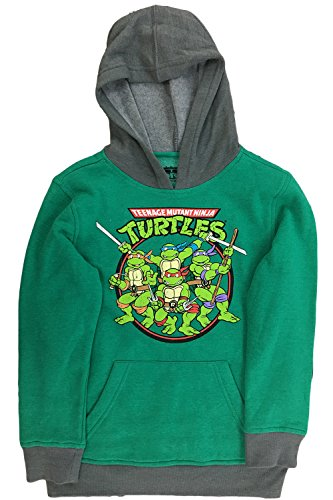 Boys Teenage Mutant Ninja Turtles Hero Hoodie (Large)