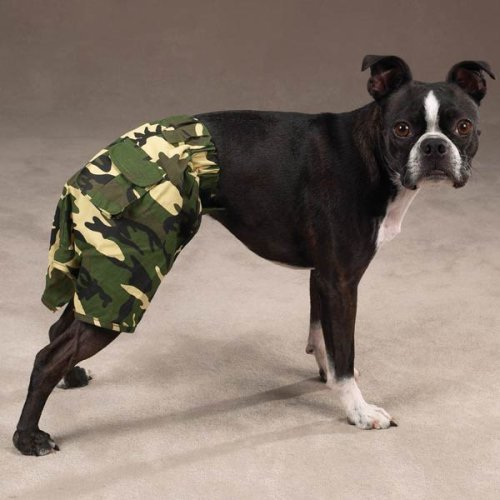 Zack & Zoey Green Camo Camouflage Cotton Dog Shorts Pants Trunks X-Small ()