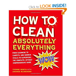 How to Clean Absolutely Everything Yvonne Worth