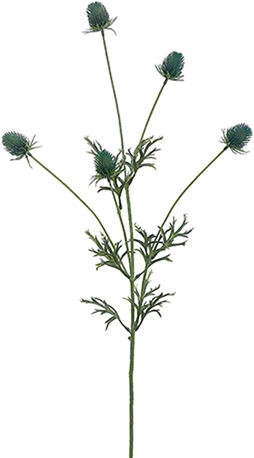 Thistle sea holly purple flower filler for bouquets and decorations artificial.
