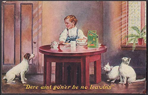 Jamestown Exposition postcard 1907 Egg-O-See cereal boy, dog & cats beg