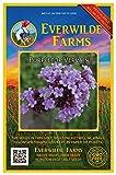 Everwilde Farms - 2000 Purpletop Vervain Wildflower Seeds - Gold Vault Jumbo Seed Packet