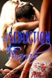 Their Seduction of Sarah