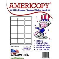 """Etiqueta de nombre y dirección de las etiquetas en blanco Americopy 3000, 2-5 /8 """"x 1"""