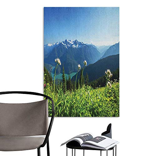 Self Adhesive Wallpaper for Home Bedroom Decor Nature Diablo Lake Washington Mountains Dandelions Thistle Flowers Wilderness Image Green Sky Blue for Kids Rooms Boy Room W16 x H20 -