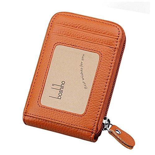 Boshiho RFID Blocking Card Holder Genuine Leather Credit Card Case Organizer Compact Wallet Zip Around Accordion Style (Brown)