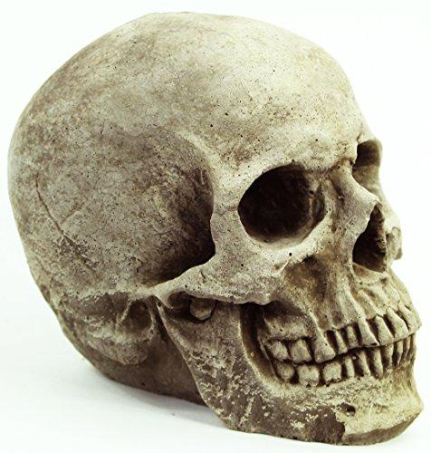 Skull Head Concrete Garden Statue Cement Figurine Cast Stone Halloween Skull Skeleton Sculpture