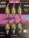 Best Feit Electric Light Bulbs - Feit - LED E12 Soft White candelabra chandelier Review