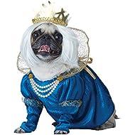California Costumes Pet Queen Of Bones Dog Costume Costume