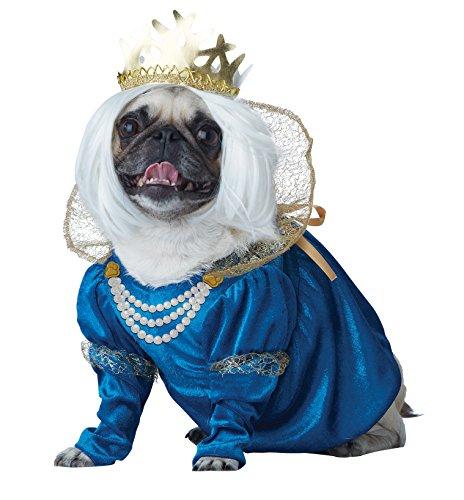 California Costume Collections Queen of Bones Dog Costume, Medium - Queen Of Bones Dog Costumes