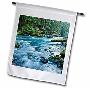 Danita Delimont–Parque Nacional–Dungeness Río en parque nacional Olympic, Washington–banderas