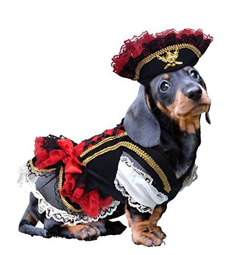 (Swashbuckler Pirate Dog Costume Detailed Black Velveteen Petticoat Dress and Hat(Size 3))