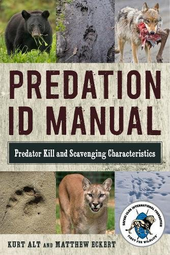 Predation ID Manual: Predator Kill and Scavenging (Grey Fox Hunting)