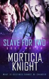 Free eBook - Slave For Two