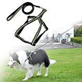 ZOTO No Pull Dog Harness Lead Set, Nylon Padded Reflective Lead Tape, 13-20 inch Adjustable Chest Size, Perfect Walking Leash, Pet Travel Safety Belt
