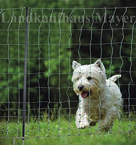 Valla para perros, gatos o gallinas, 15 m, color verde, altura de 105 cm, incluye 6 postes: Amazon.es: Productos para mascotas