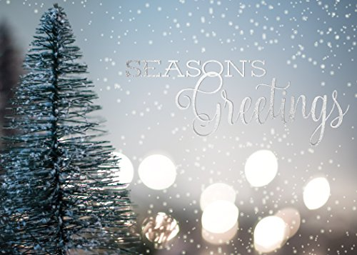 Holiday Foil Printed Greeting Cards - H1701. Greeting Card Featuring a Snowy Backdrop with Season's Greetings Message in Silver Foil. Box Set Has 25 Greeting Cards and 26 Silver Foil Lined Envelopes.