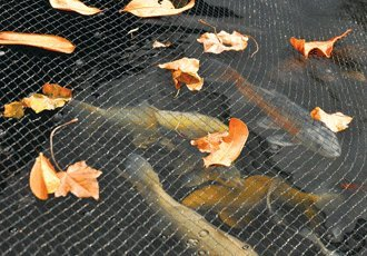 Hozelock Pond Cover Net 10 Feet x 13 Feet