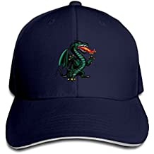 UAB Blazers Classic Dragon Logo Awesome Contract Sandwich Cap