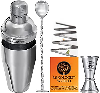 Cocktail Shaker Bar Set Martini Kit - with Double Measuring Jigger and Mixing Spoon plus Drink Recipes Booklet - 24 ounces Premium Bartender Stainless Steel Boston Tin Built-in Strainer Tool