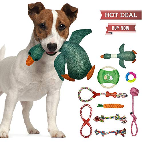 Dog Toys for Aggressive Chewers | Pet Toys for Dogs Indestructible | Dog Chews Toys | Best Teething Toys for Puppies | Dog Toys for Boredom | Dog Rope Toy | Puppy Toys-Dog Toys Multi Pack (L)