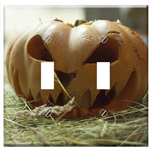Switch Plate Double Toggle - Nature Food Vegetable Pumpkin Trick Treat Night -