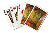 Autumn Tree Lined Road A-9007333 (Playing Card Deck - 52 Card Poker Size with Jokers)