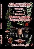 El Secreto Del Poder Tomo 14, El Brujo; Rev. Dr. Román S Rodríguez, 1599162237