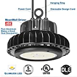 150W UFO LED High Bay Lighting Lumileds SMD 3030 LED Meanwell Driver with Mount Bracket Hanging Ring Ultra Efficient 130 Lumens per Watt White Light DLC UL Certified 5000K Waterproof Well Don