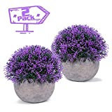 Vangold Artificial Plants Lifelike Bathroom Faux Plant Small Fake Plants with Pots for Home/Office Indoors Decor (Purple - 2 pcs)