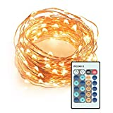 LED String Lights, LDesign 33ft Dimmable 100 LEDs 10 Levels Waterproof(IP65) Powered Starry Fairy Copper Wire Christmas Lights with Remote Control for Indoor ,Outdoor,Garden,Wedding,Christmas Party,Patio,Lawn,Holiday,Xmas Tree, Wedding-3 Modes Warm White