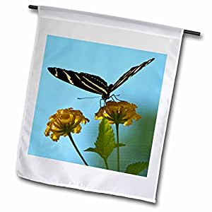 Roni Chastain Floral - Butterfly, black and yellow on yellow flower - 18 x 27 inch Garden Flag (fl_98376_2)