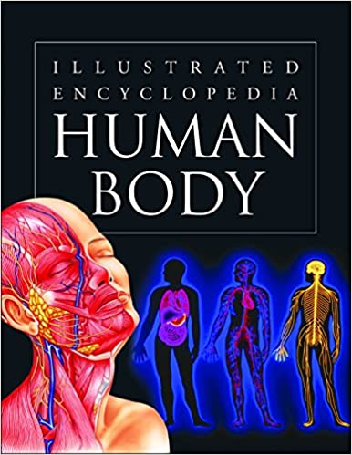 Buy Human Body Illustrated Encyclopedia Book Online At Low Prices