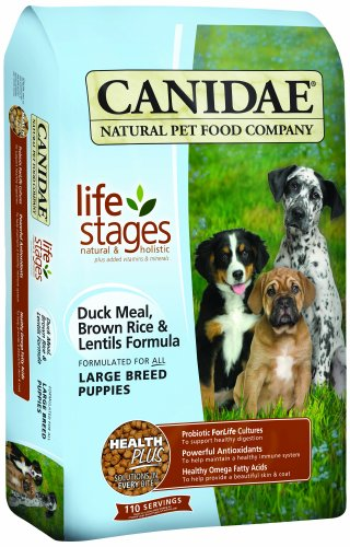 CANIDAE All Life Stages Large Breed Puppy Food Made With Duck Meal, Brown Rice & Lentils,  15 lbs
