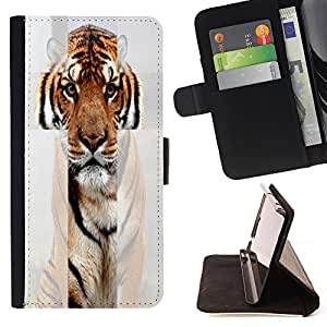 - toy poodle dog? - - Premium PU Leather Wallet Case with Card Slots, Cash Compartment and Detachable Wrist Strap FOR Apple iPhone 6 6S Plus 5.5 King case