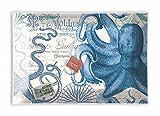 Michel Design Works Rectangular Glass Soap Dish, Octopus