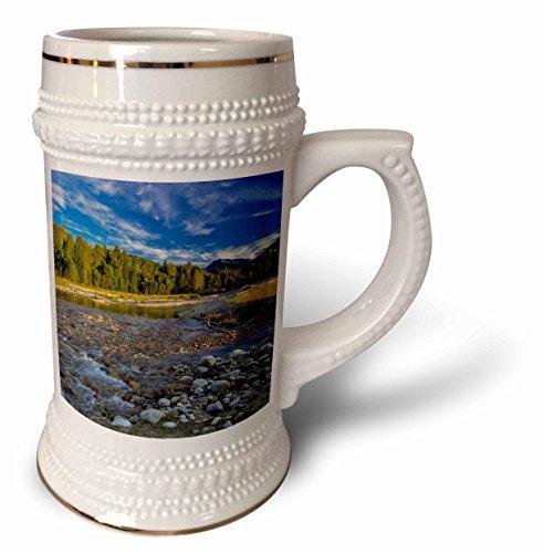 danita-delimont-canada-cariboo-creek-in-burton-british-columbia-canada-22oz-stein-mug-stn-226697-1