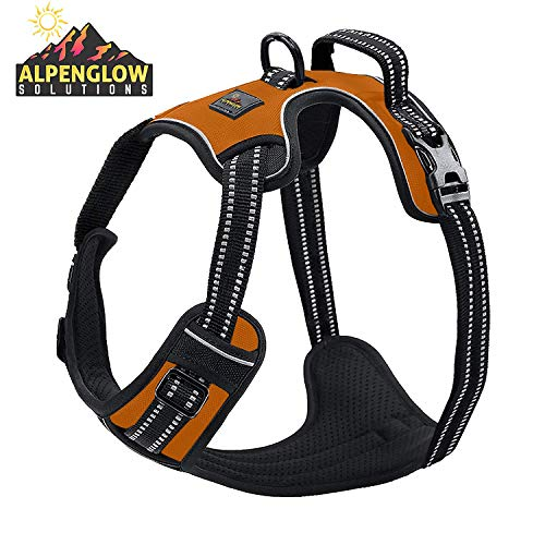 Dog Harness No Pull No Choke Adjustable Vest, Car Safety, Easy Control for Walking Hiking, 3M Reflective Oxford Material, Durable, Breathable - Small, Medium, Large & Extra Large Dog & Puppy M-Orange ()