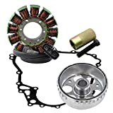 Kit Stator + Gasket + Flywheel + Flywheel Puller For Ski-Doo Expedition Grand Touring Renegade GSX GTX 1200 2009-2015 OEM Repl.# 420892370 420892371 420892374 420892376 420430750 420892360 420892361