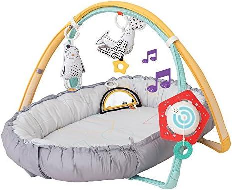 Taf Toys 12235 - Aire de Juego Polo Norte