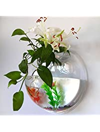 Aquariums Amp Fish Bowls Amazon Com