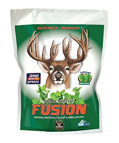 Whitetail Institute Fusion (Perennial) Clover & Chicory Food Plot Seed (Spring and Fall Planting), 9.25-Pound