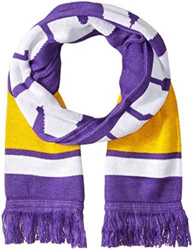 OTS NFL Minnesota Vikings Male Vantage Scarf, Purple, Men's