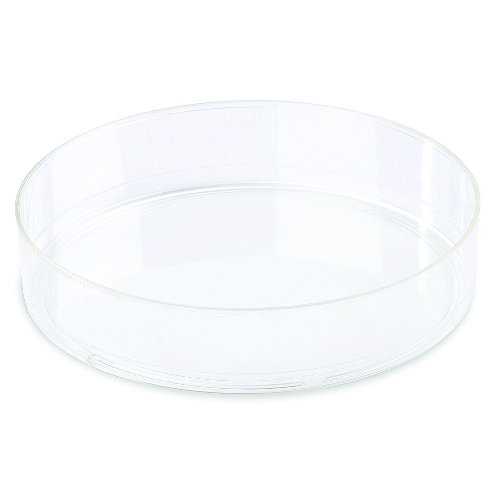 Corning Falcon #353003, 100 mm TC-Treated Cell Culture Dish, (Pack of 20)