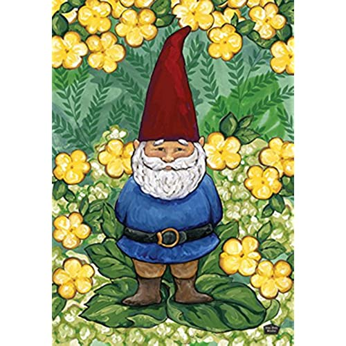 Garden Gnomes On Sale: Lawn Decorative Garden Gnomes: Amazon.com
