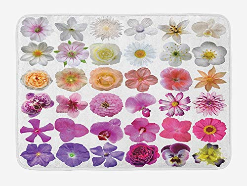 Flower Bath Mat, Pattern of Various Vase Flowers Petunia Botanic Wild Orchid Floral Nature Art, Plush Bathroom Decor Mat with Non Slip Backing, 23.6 W X 15.7 W Inches, White Lilac Pink