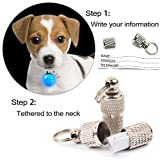 IN HAND Water Resistant Clip-On Dog & Cat Collar