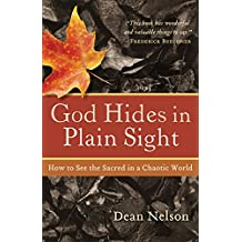 God Hides in Plain Sight: How to See the Sacred in a Chaotic World