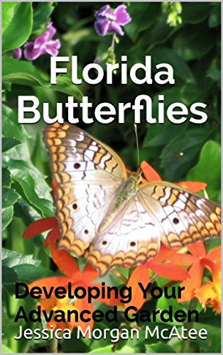 florida butterflies developing your advanced garden by mcatee jessica morgan - Florida Butterfly Garden