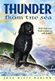 img - for Thunder from the Sea[ THUNDER FROM THE SEA ] by Harlow, Joan Hiatt (Author) Apr-26-05[ Paperback ] book / textbook / text book